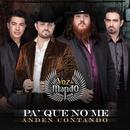 Pa' Que No Me Anden Contando (Single) thumbnail