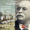 Waldteufel: Les Patineurs & Other Great Waltzes thumbnail
