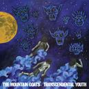 Transcendental Youth thumbnail