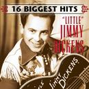 The Hits: 16 Biggest Hits thumbnail
