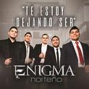 Te Estoy Dejando Ser (Single) thumbnail