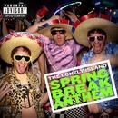 Spring Break Anthem  thumbnail