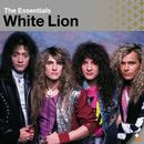 Essential: White Lion thumbnail