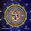 Zulu Guru thumbnail