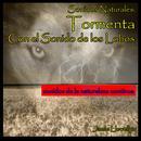 Sonidos Naturales: Tormenta Con el Sonido de los Lobos thumbnail