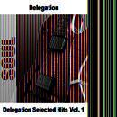 Delegation Selected Hits Vol. 1 thumbnail