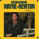 The Best Of Wayne Newton Now thumbnail
