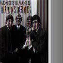 Wonderful World thumbnail