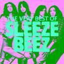 The Very Best Of Sleeze Beez thumbnail