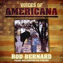 Voices Of Americana: Texas Rollercoaster Feeling thumbnail