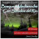 Sonidos De La Naturaleza Para Dormir: Bosque A Medianoche Con Sonidos Del Río thumbnail