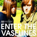 Enter The Vaselines thumbnail