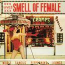 Smell Of Female thumbnail