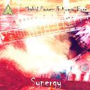 Synergy thumbnail