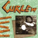 Curlew thumbnail