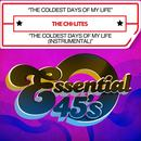 The Coldest Days Of My Life / The Coldest Days Of My Life (Instrumental) (Digital 45) thumbnail