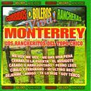 Viva Monterrey thumbnail