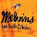 Bulls & The Bees / Electroretard thumbnail