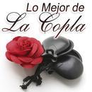 Lo Mejor De La Copla Vol.1 thumbnail