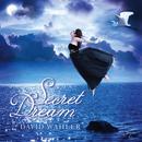 Secret Dream thumbnail