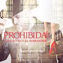 Prohibida (Single) thumbnail