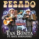 Tan Bonita (Feat. Raul Hernandez) (En Vivo) (Single) thumbnail