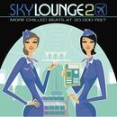 Skylounge 2 (More Chilled Beats At 30,000 Feet) thumbnail