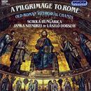 A Pilgrimage To Rome thumbnail