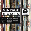 Pass The Dutchie (Odjbox Remix) (Single) thumbnail