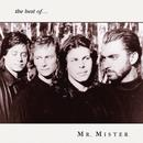 The Best Of Mr. Mister thumbnail