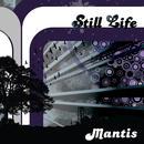 Still Life thumbnail