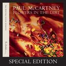 Flowers In The Dirt (Special Edition) thumbnail