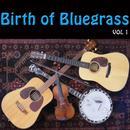 Birth Of Bluegrass, Vol. 1 thumbnail
