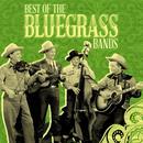 Best Of The Bluegrass Bands thumbnail