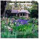 Sonidos Naturales Con Música: Canto De Los Pájaros Con Música Relajante thumbnail