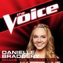 Shake The Sugar Tree (The Voice Performance) (Single) thumbnail