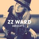 365 Days  thumbnail