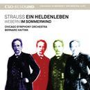 Strauss: Ein Heldenleben thumbnail