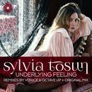 Underlying Feeling (2016 Remixes) thumbnail