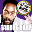 Reggae Masterpiece - Tarrus Riley 10 thumbnail