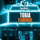 Flamingo (Single) thumbnail