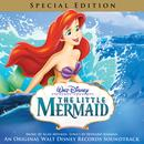 Little Mermaid (Special Edition) thumbnail