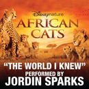 The World I Knew (From Disneynature African Cats) (Single) thumbnail