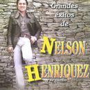 Grandes Exitos De Nelson Henriquez Y Su Combo thumbnail