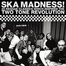 Ska Madness! thumbnail