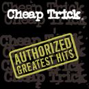 The Authorized Greatest Hits thumbnail