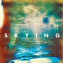 Skying thumbnail
