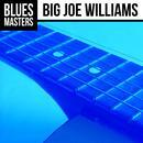 The Very Best Of Big Joe Williams (Live) thumbnail