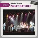 Setlist: The Very Best Of Molly Hatchet LIVE thumbnail