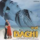Baghi (Original Soundtrack) thumbnail